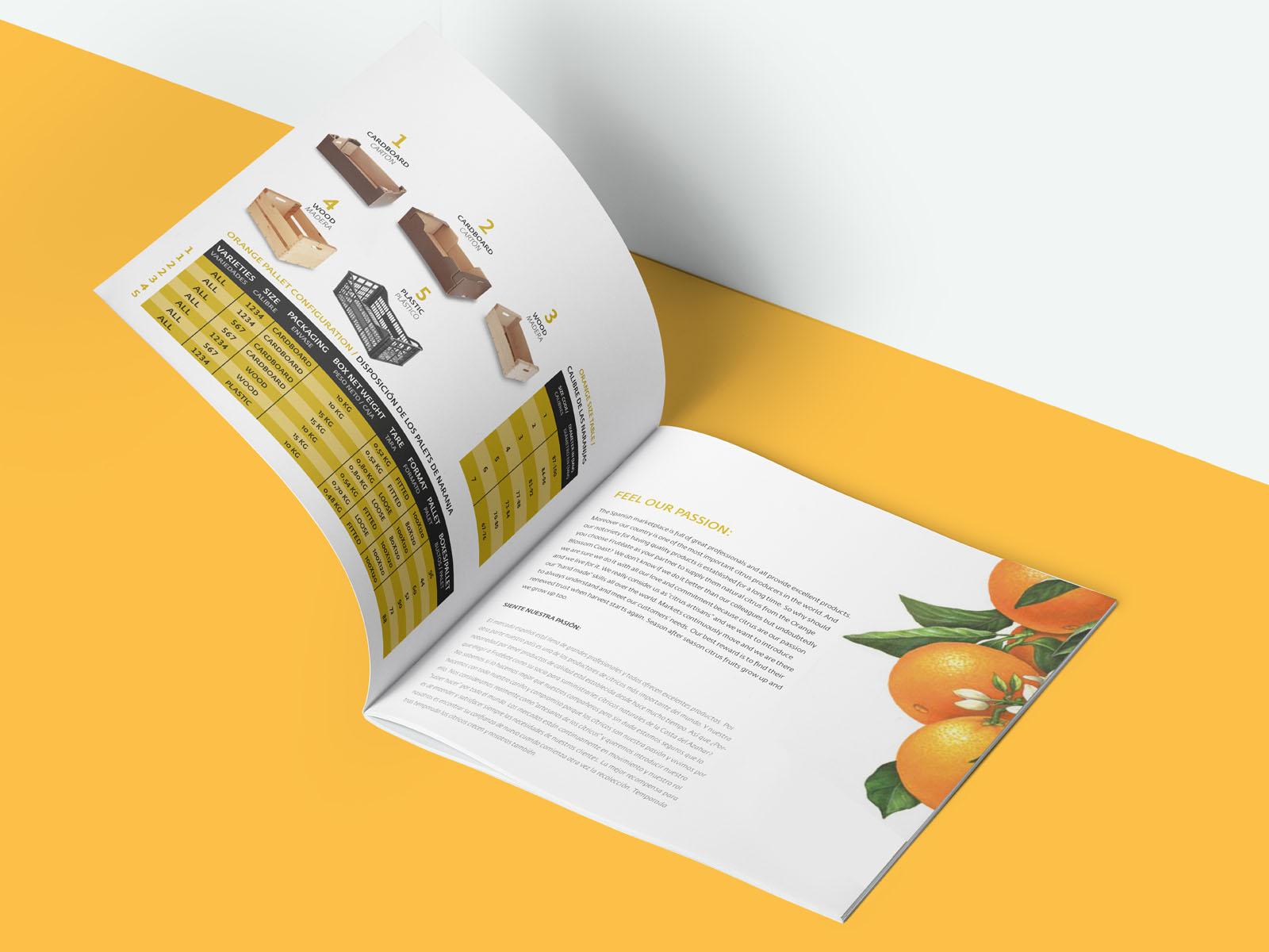 Catalogue, Catalogo para Frutétae, diseño y maquetación de catálogo para empresas