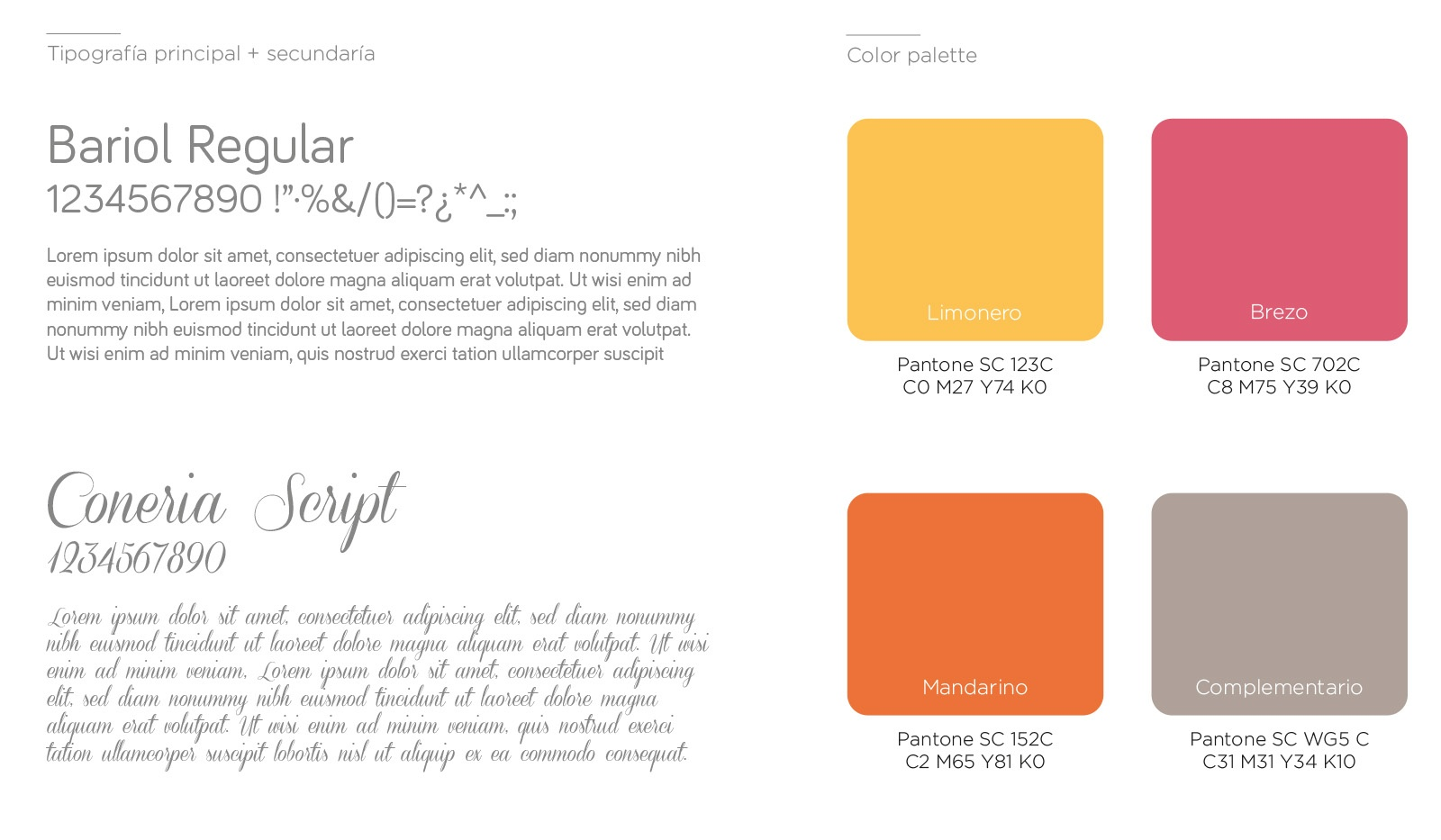 tipografía corporativa y colores corporativos