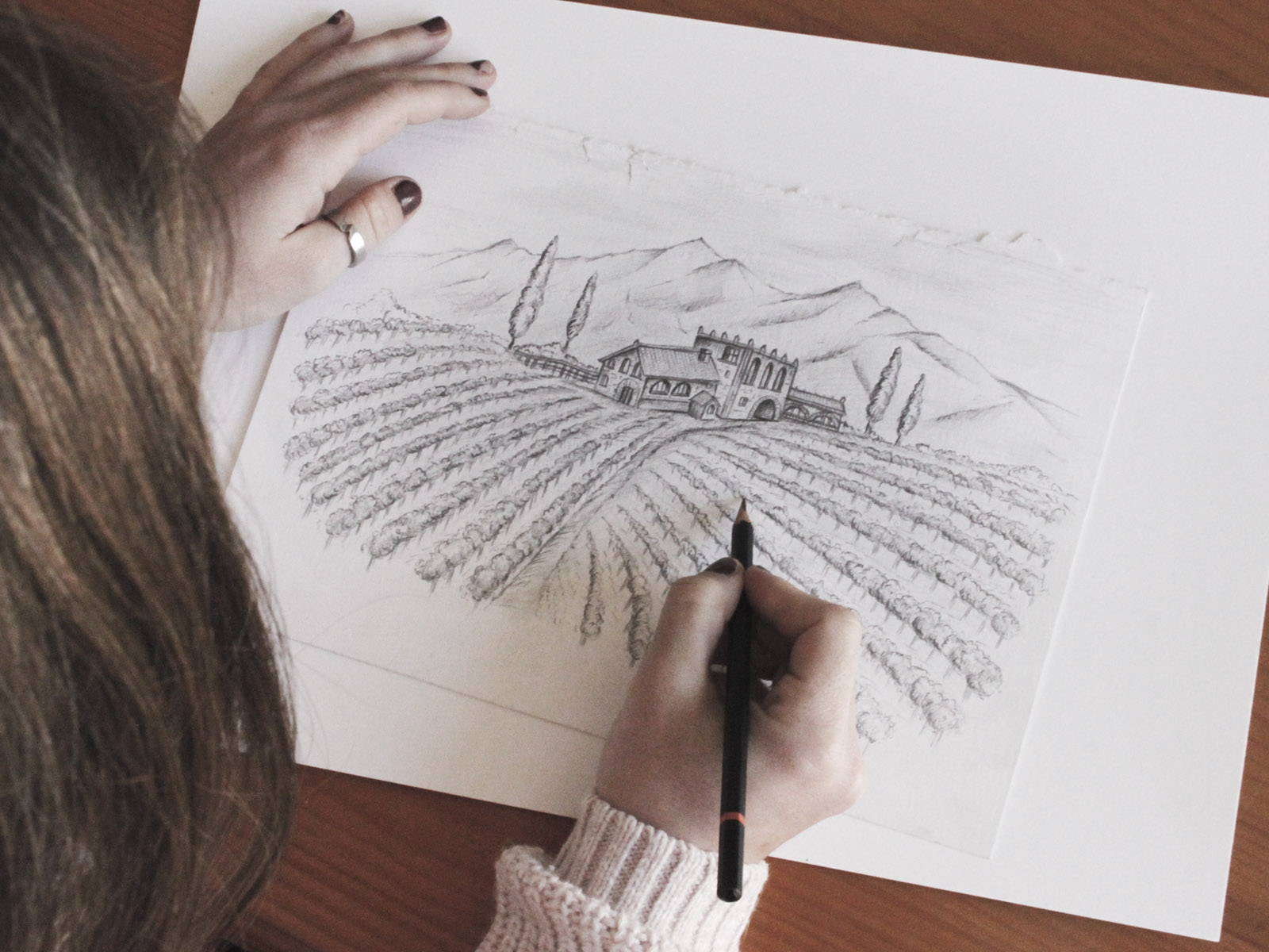 Ilustración hecha a mano, dibujo a carboncillo, diseño de etiqueta para vino