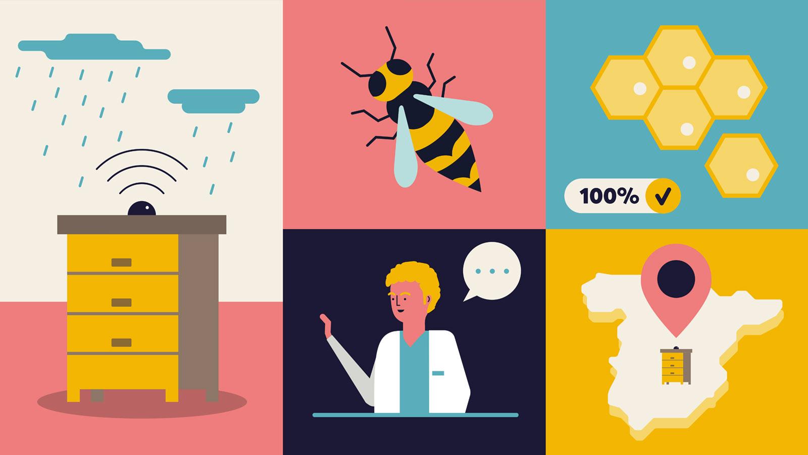 bee2keeper video animado, Ilustración vectorial de una colmena, una abeja, un panal de abejas, veterinario y la localización de la comena en España