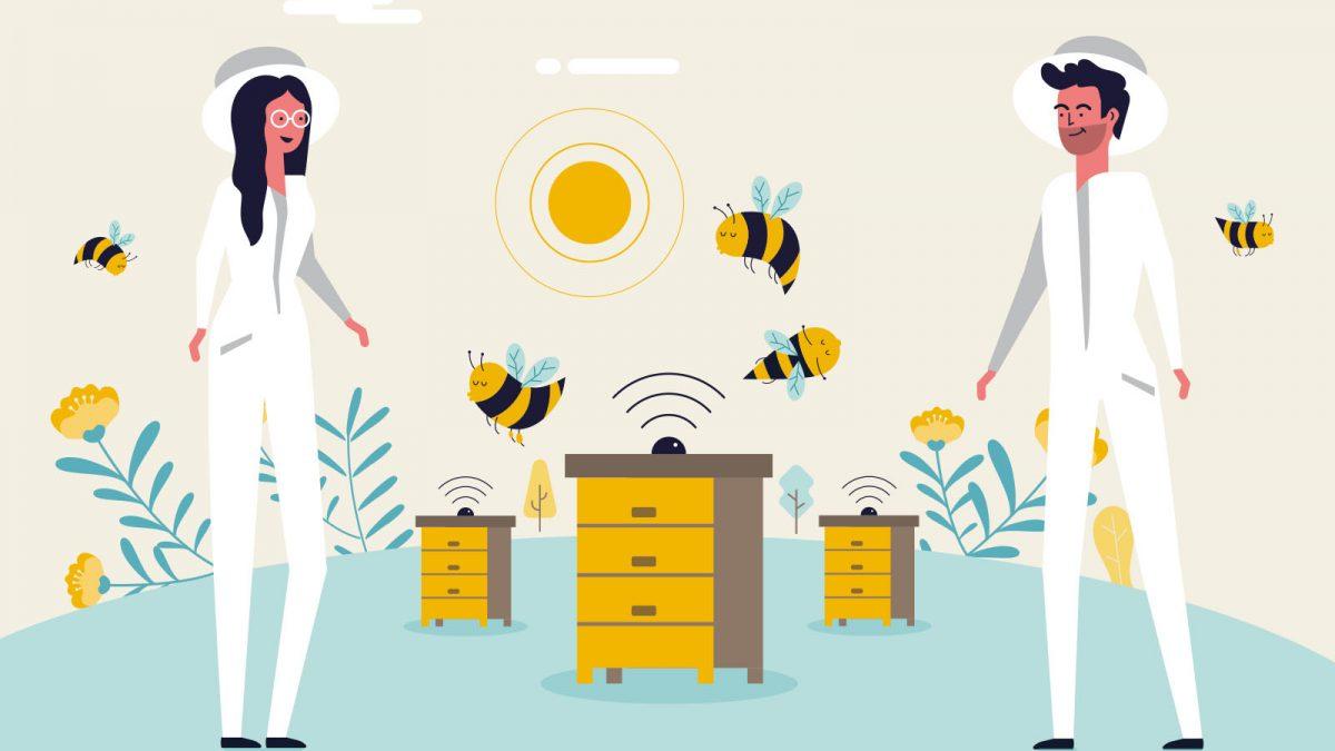 Bee2keeper video animado, ilustración vectorial y guía de estilo para video animado apicultor abejas colmenas