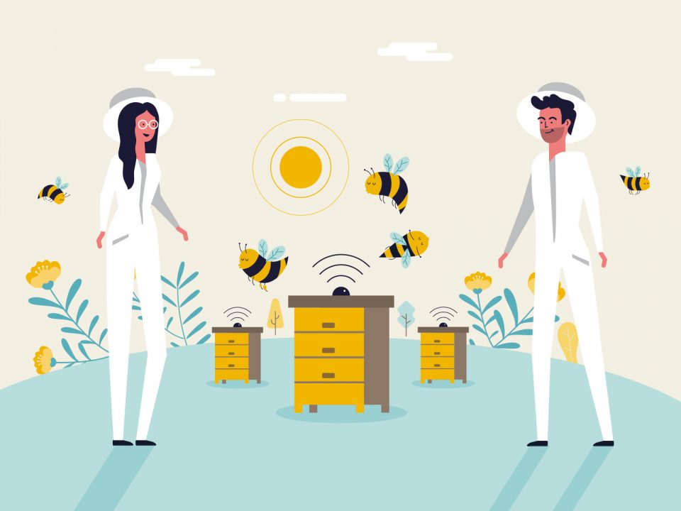Bee2keeper video animado, ilustración vectorial y guía de estilo para video animado apicultor abejas colmenas