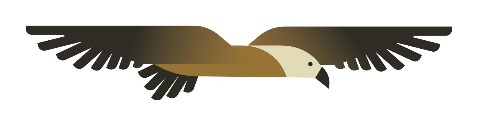 ilustración águila